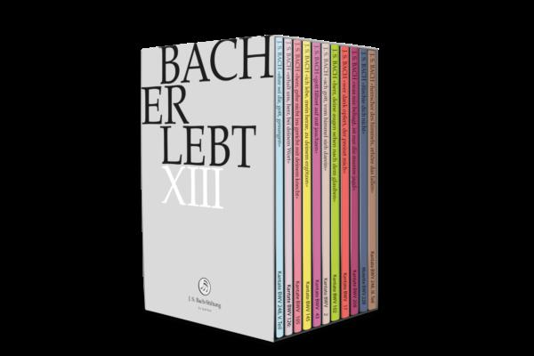 DVD: Joh. Seb. Bach: Kantate BWV 105 Herr, gehe nicht ins Gericht mit deinem Knecht